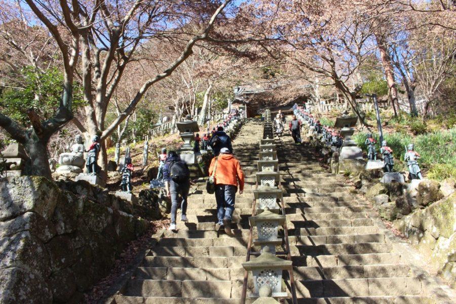 大山寺に続く石段