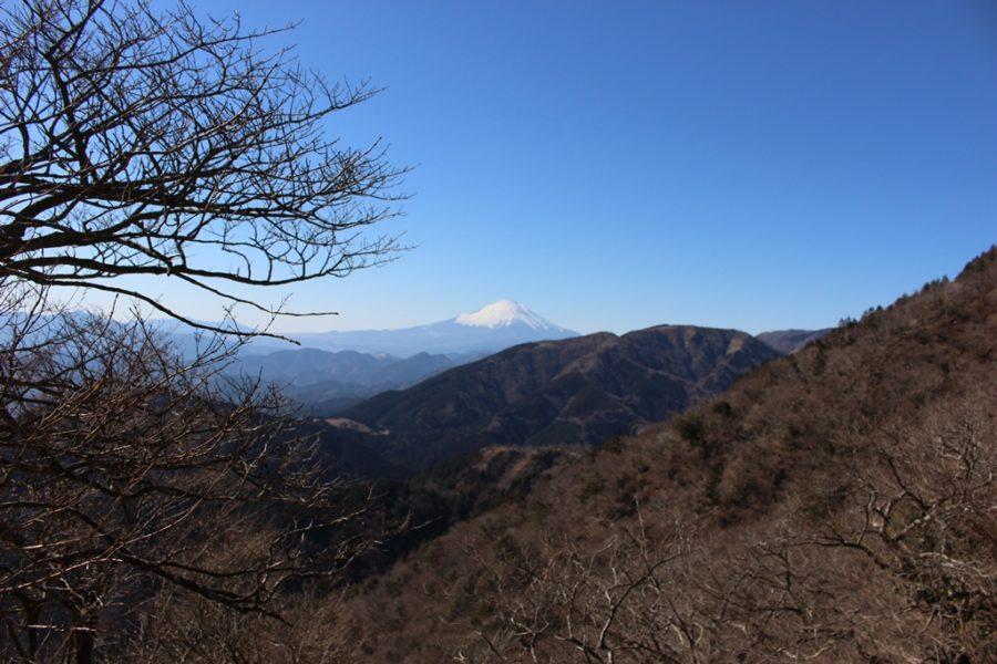 富士見台から見えた富士山の姿