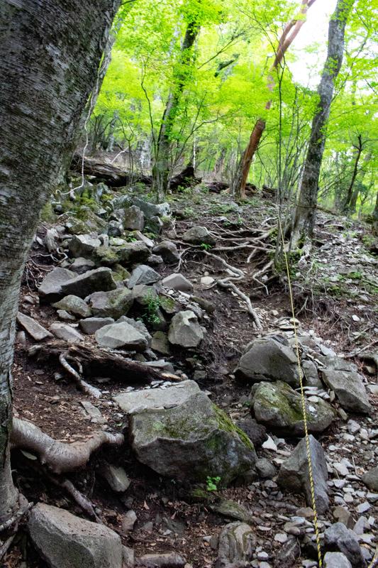 岩場の様子2