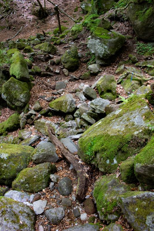 岩場の様子1