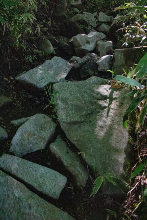 岩だらけの登山道の様子