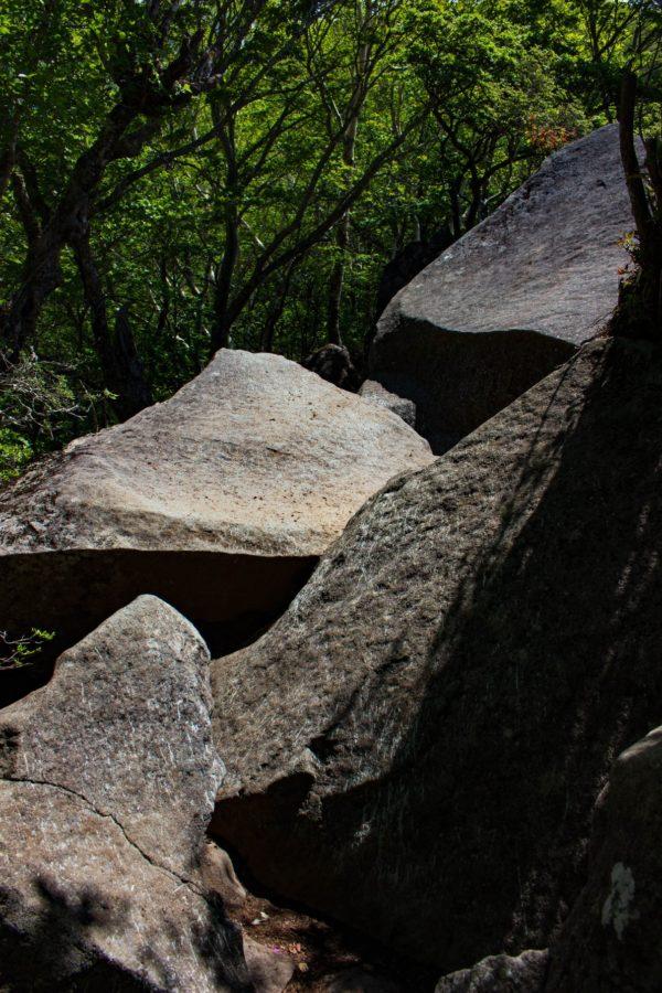 ルート上の岩