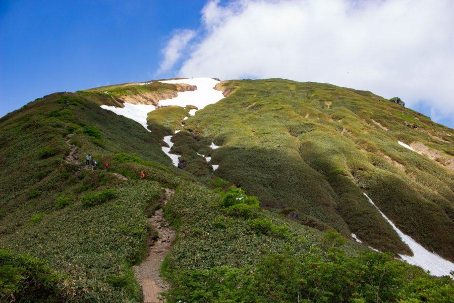 山頂方向の写真