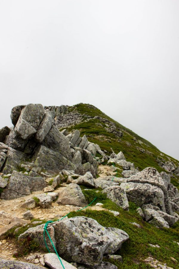 稜線から振り返った山頂方向