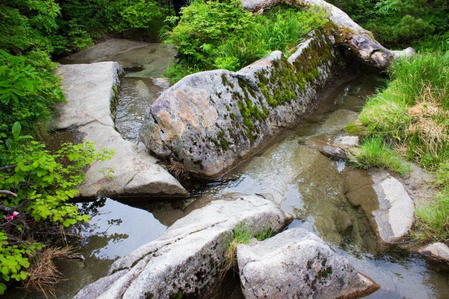 濃ヶ池の透き通った水