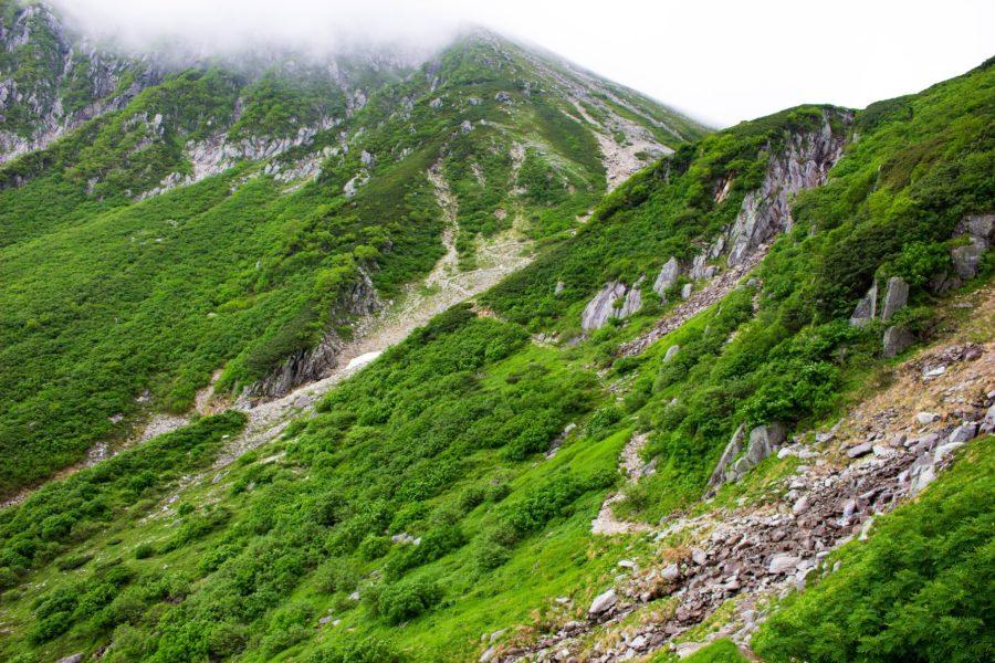 遠く伸びる登山道の様子