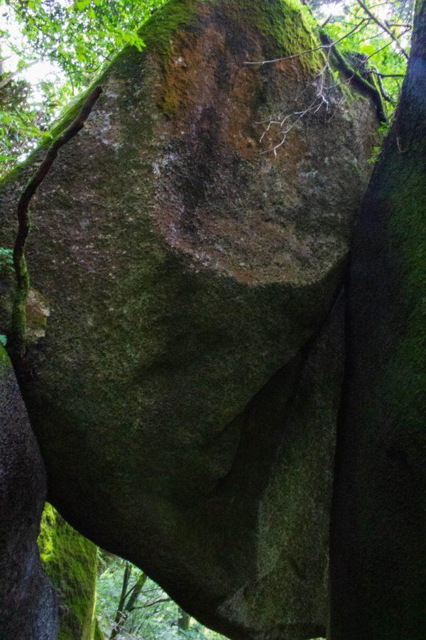 天井となっている岩の様子