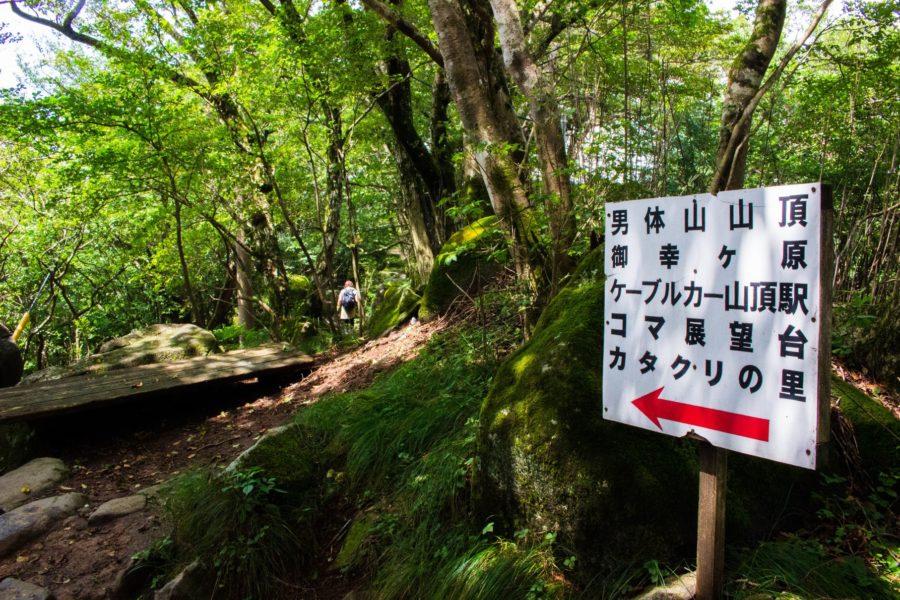 男体山へ続く道
