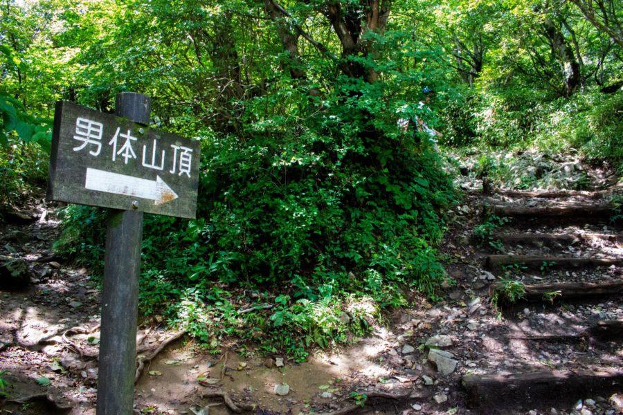 山頂に続く登り坂の写真